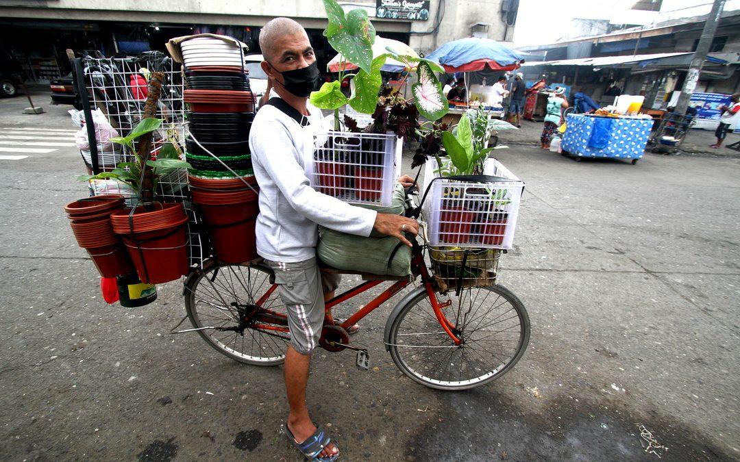 Mobile plantito